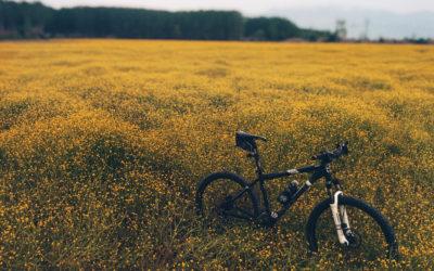 rower uszczęśliwia?